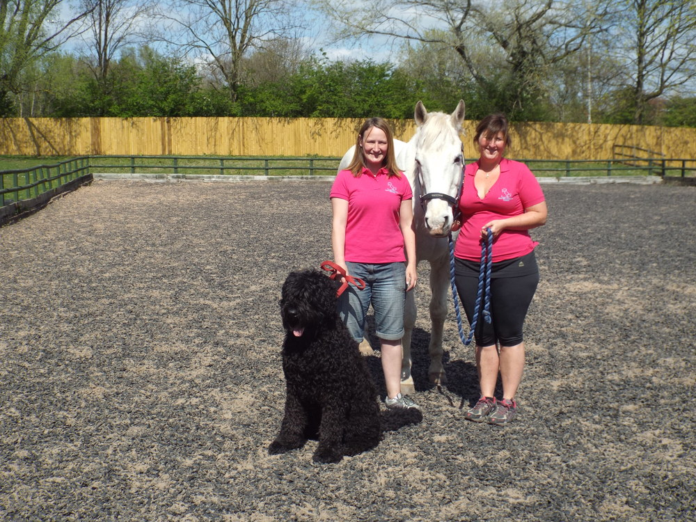 Dog Walking Pet Care Equine Visits