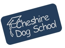 Cheshire Dog School Rucorn