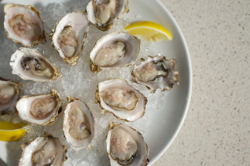 Daily Oysters