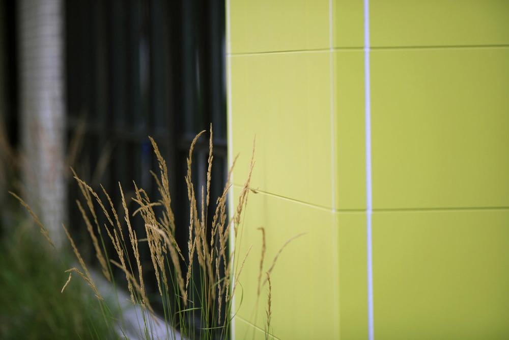 Green 2460-1.jpg