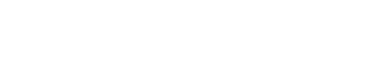 Black Halcyon Agency