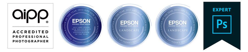 Award badges new Hires.jpg