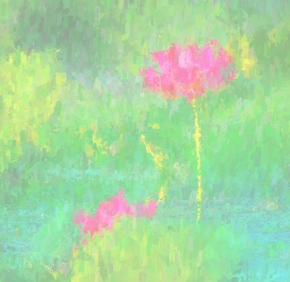 yellow water lily v2 web.jpg