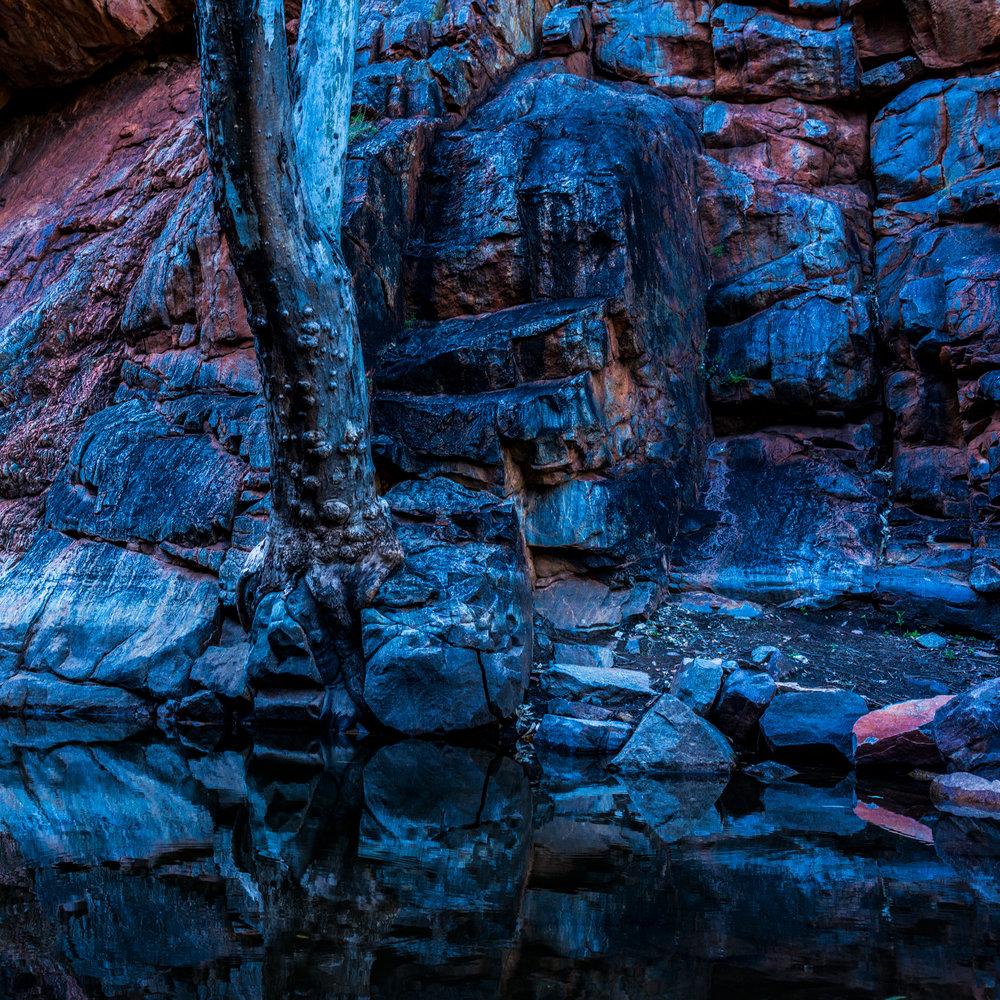 Serpentine Abstract.jpg