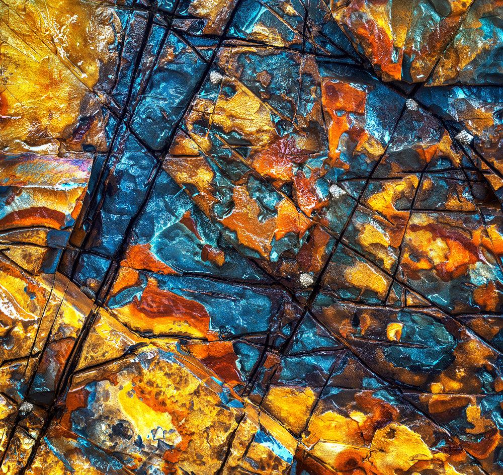 Delicate Nobby Wet rocks.jpg