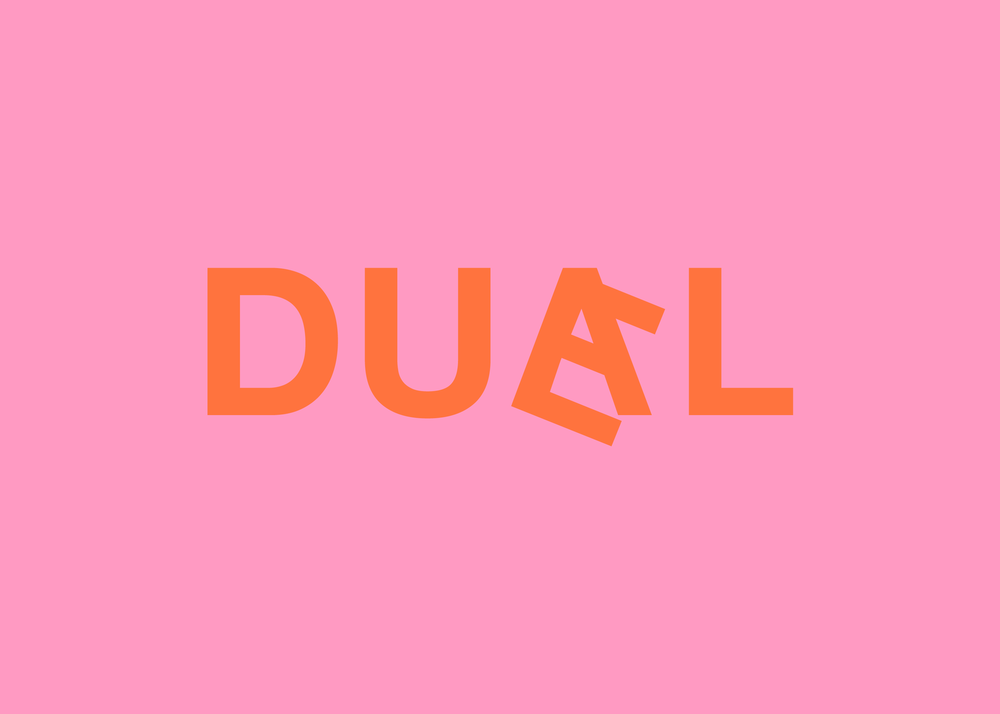 duael_flip3.png