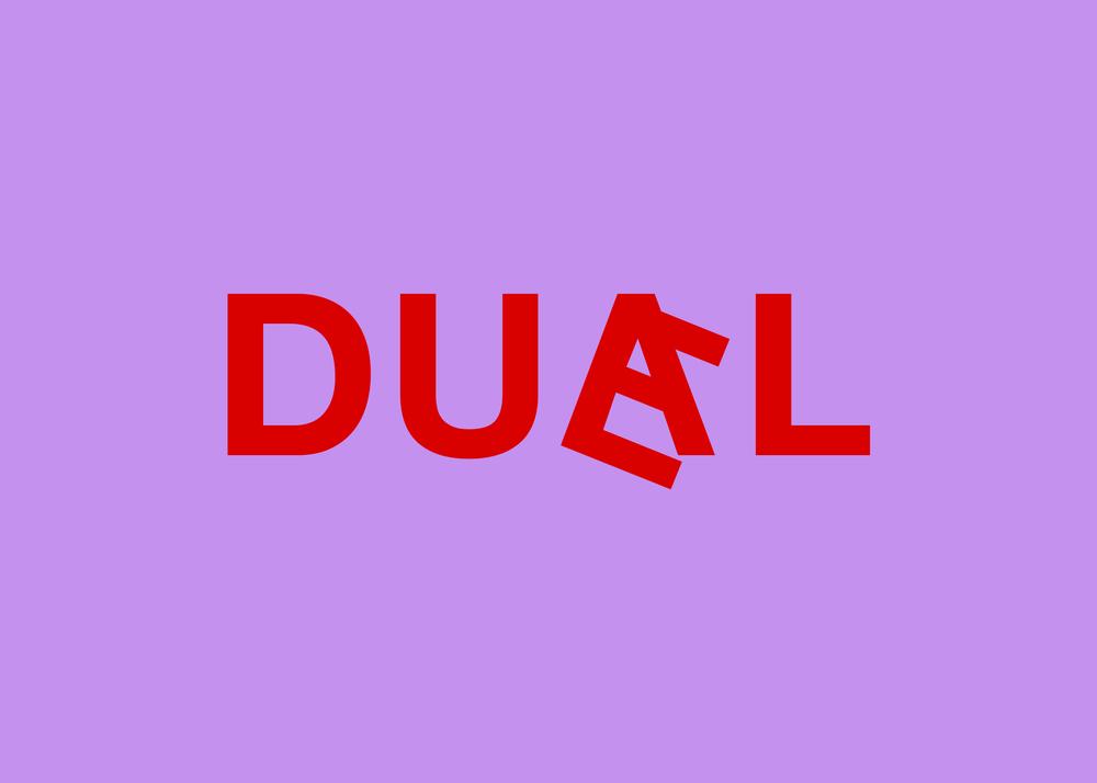duael_flip15.png