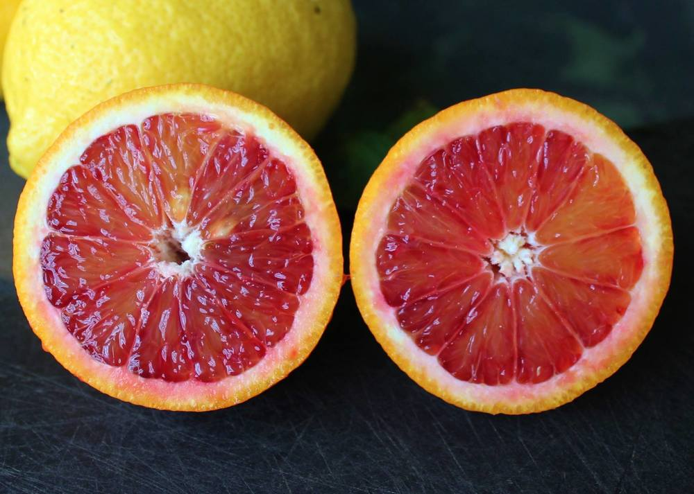 Moro blood orange phoenix