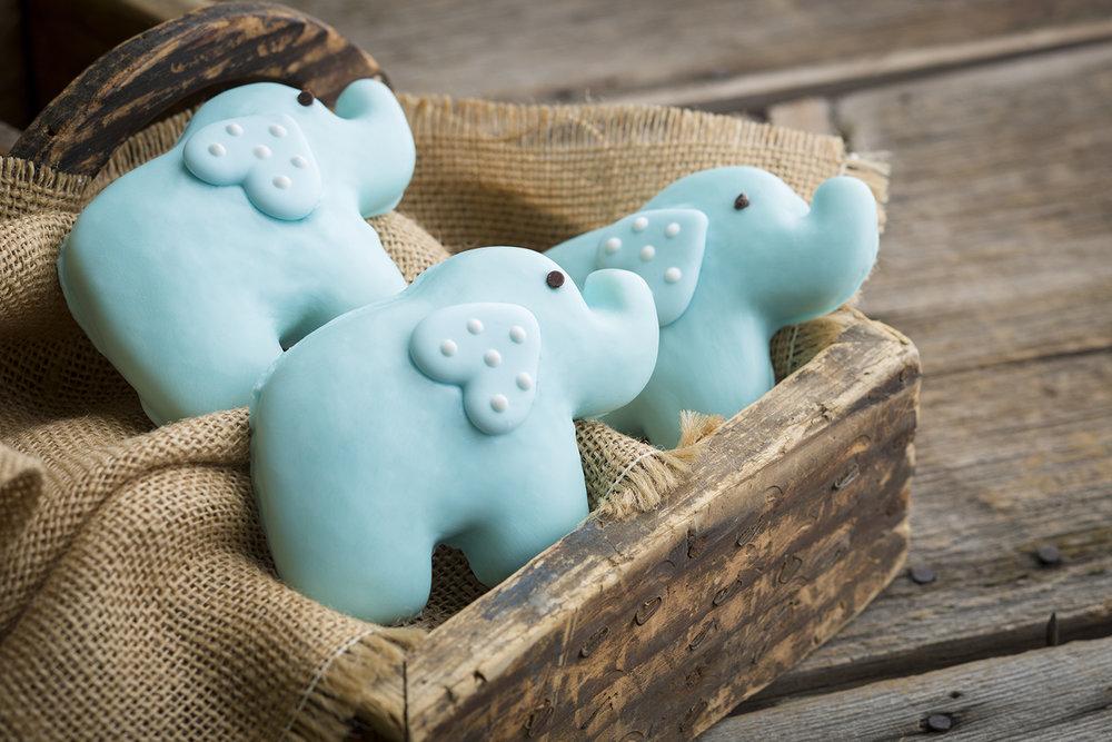 kdrs_elephantcookies_02.jpg
