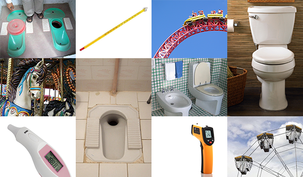 "Google image search on ""toilet"", ""thermometer"", and ""roller coaster"""