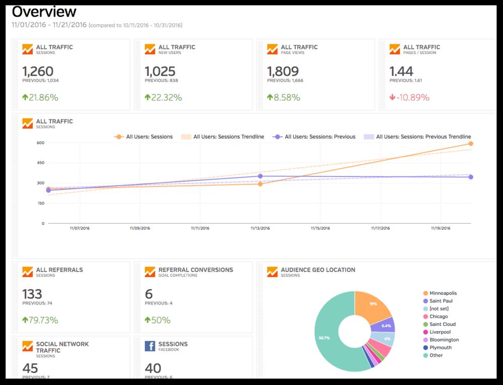 raventools-analytics-snapshot.png