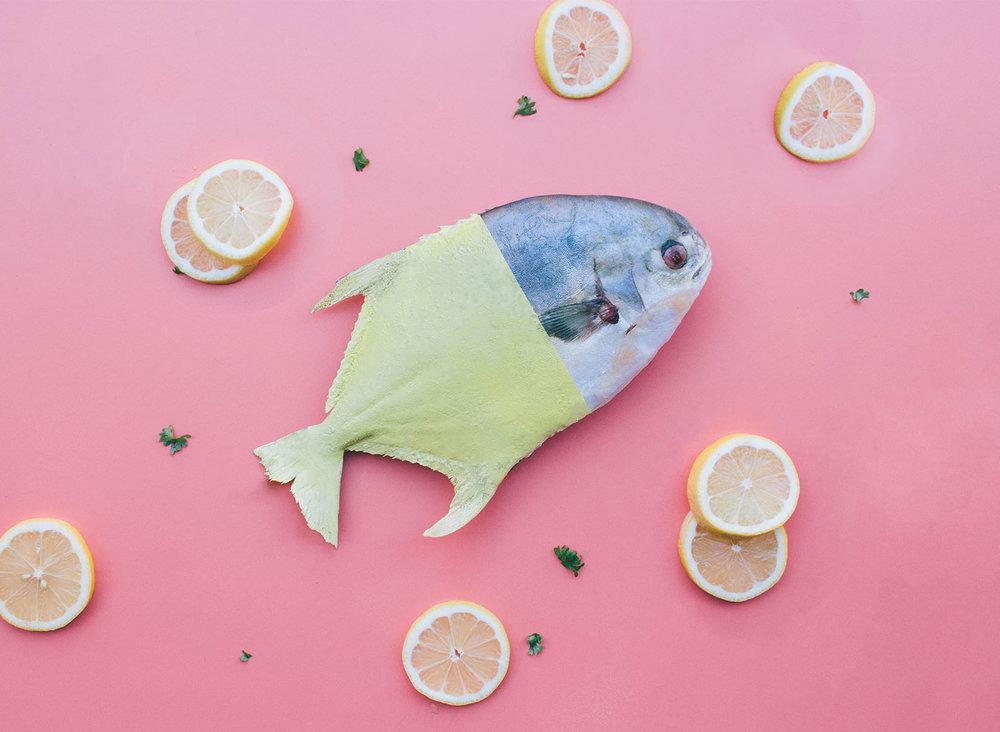 nm-fish.jpg