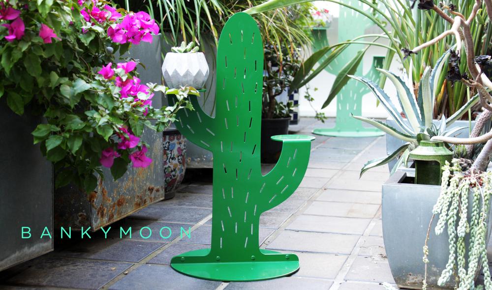 cactus_balcony_logo.jpg
