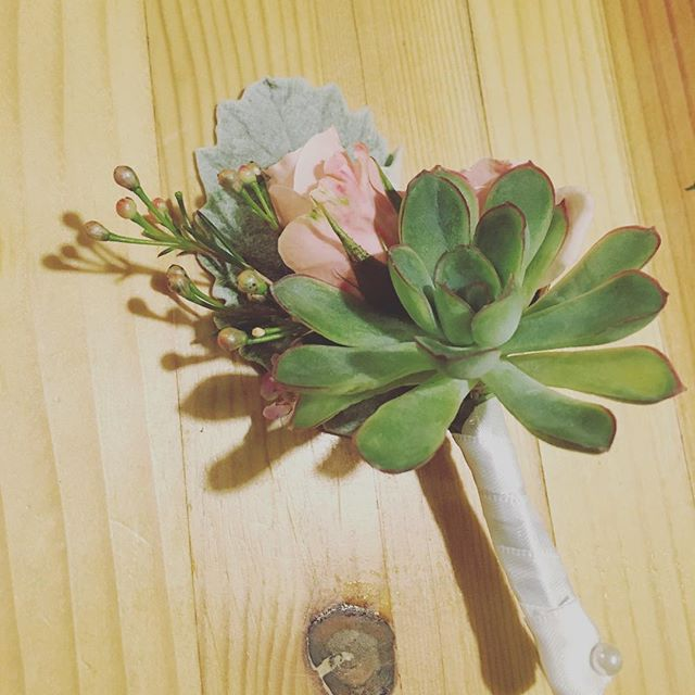 Late night boutonierring... #succulents #dustymiller #sprayroses #waxflower #utahflorist