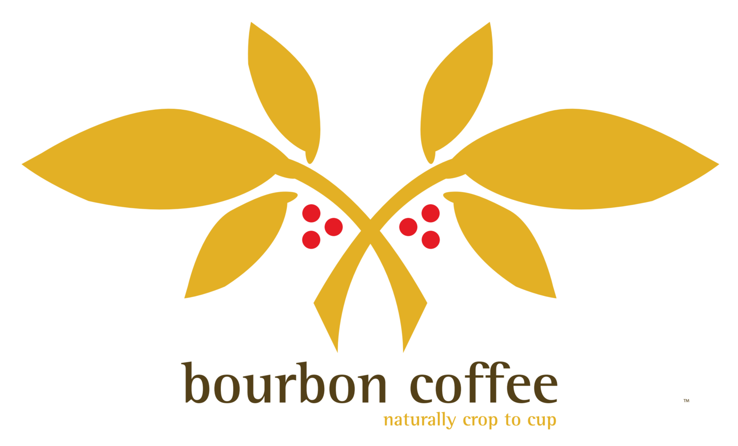 bourbon coffee food preparer job description food service worker resume - Food Preparer Job Description