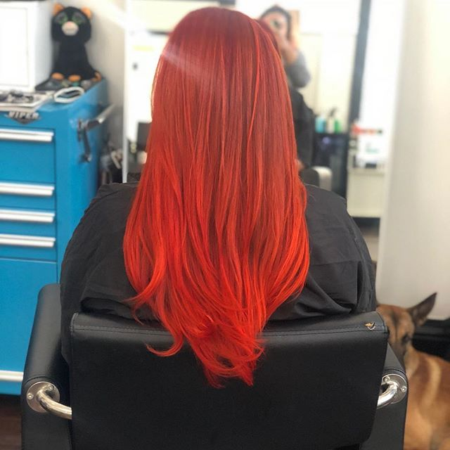 Fire engine 🚒 #red for @bullylady by @kayscosmo  #kevinmurphy #haircolor #haircut #hairstyles #longhair #redhair #healthyhair #sfstylist