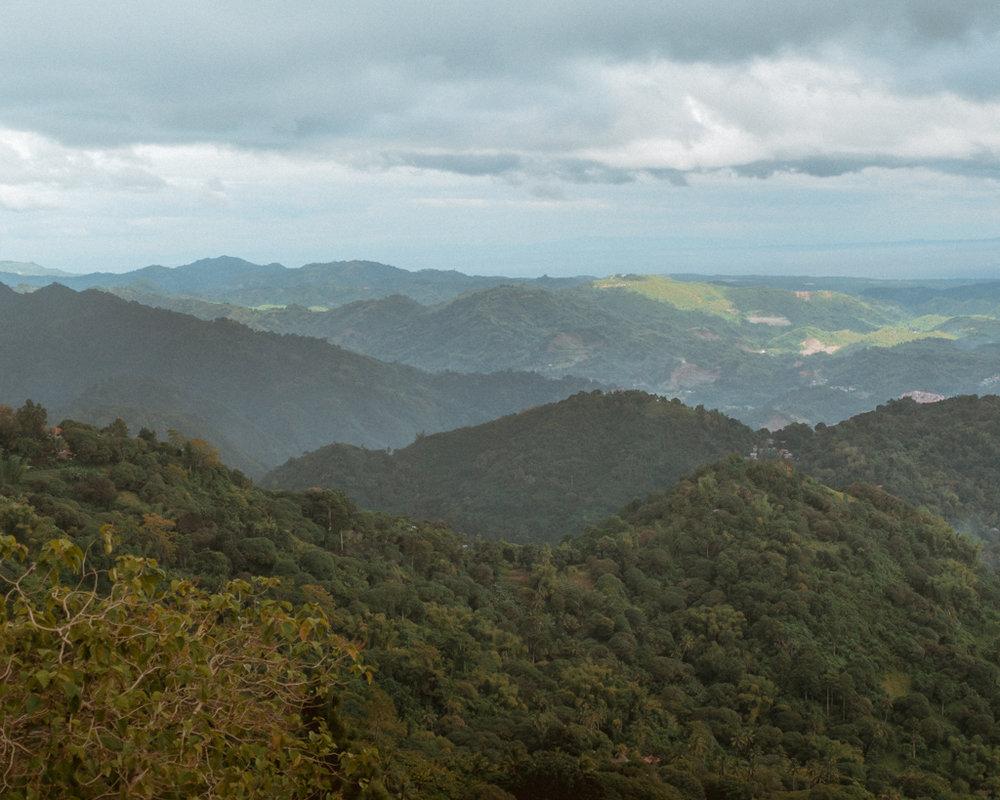 mountainview-3.jpg