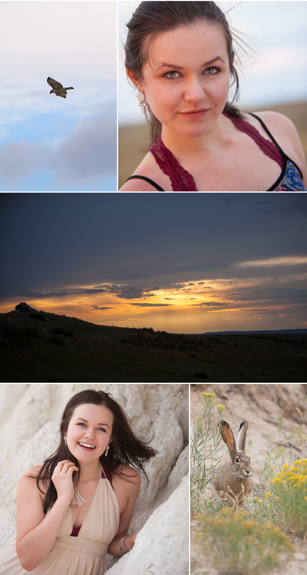 high school senior pictures and wildlife in unique, outdoor location in Colorado, with photographer Jennifer Koskinen, Merritt Portrait Studio