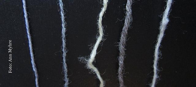 Fra venstre til høyre:  Wollmeise  Merino Superwash,  BC Garn  Shetland,  Rauma  Finull,  Sandnes  Peer Gynt og til sist,  Jorstad Creek  Finn.