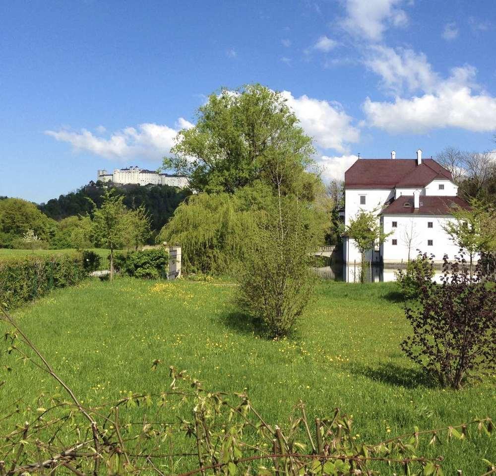Die herrlichen Wiesen um das Schloss Freisaal liegen nur 5 Minuten von Ihrer Wohnung in der Fürstenallee 21 entfernt.