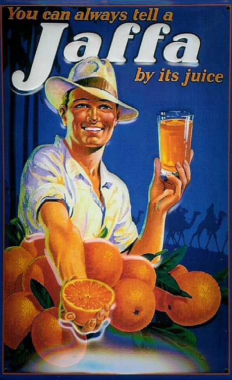 oranges_6b.jpg