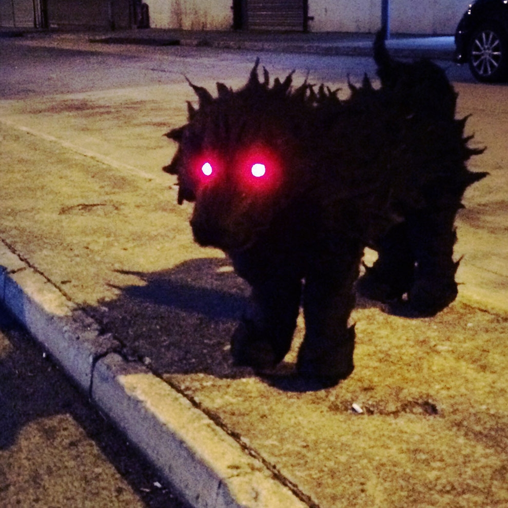 Ghost Dog 狗鬼
