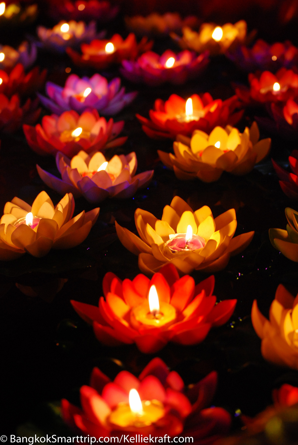 Chinese New Year. Candle in Lotus. Thailand Nakhorn Sawan