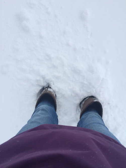 Those my friends, are knee high muck boots. It was a deep snow for sure.