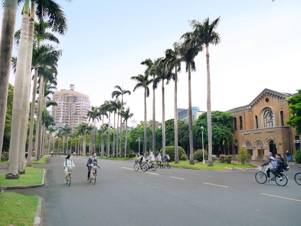 20160120-椰林大道.jpg