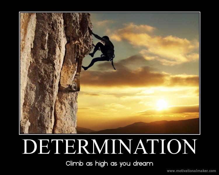 determination vivo health wellness