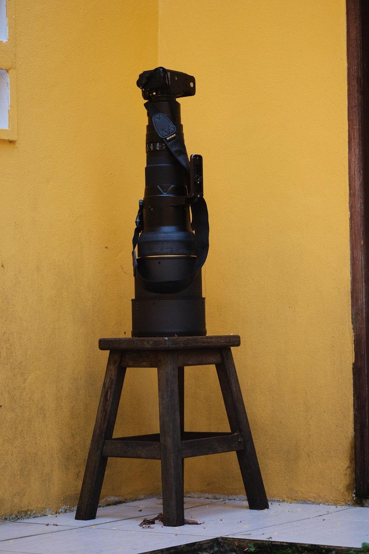 Nikon Df with 600mm f/4