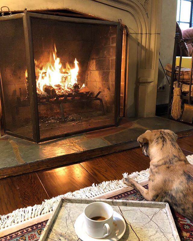 Ed loves sitting by the fireside as much as I do. It's gonna be a lovely Fall & Winter. ♥️#iloveed