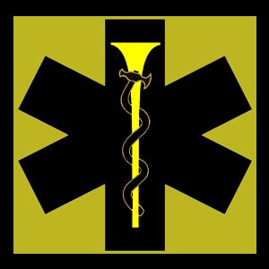MedicSymbol.jpg