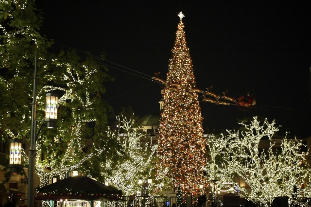 the grove christmas decorations