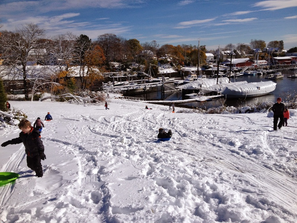 SLEDDING IN CAMDEN HARBOR PARK