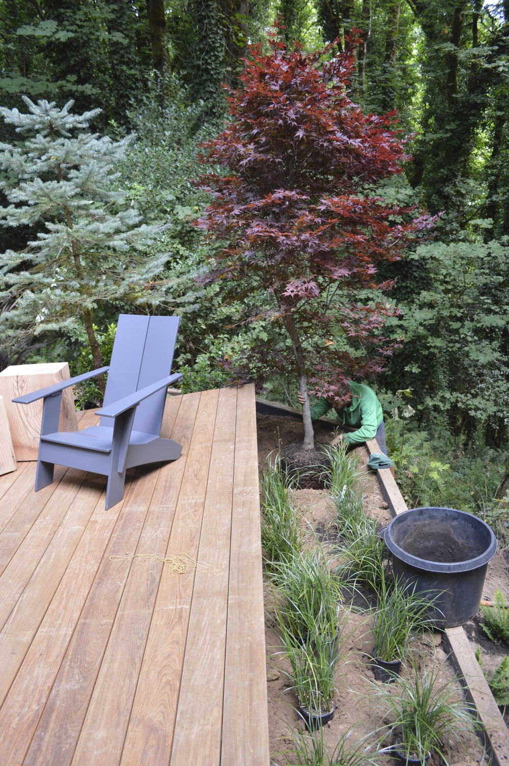 Ipe Decking / Slough Sedge / Emperor Maple