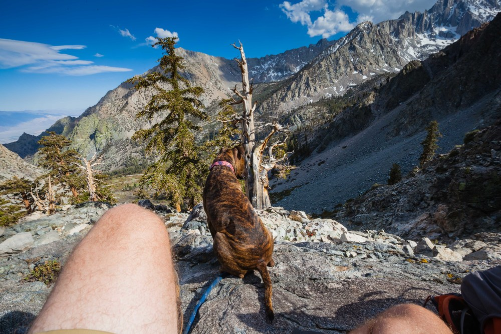 Luda and I overlooking the Sierra Nevada Mountains, several thousand feet above our camp. Not much snow for late May andthe elevation we are at.