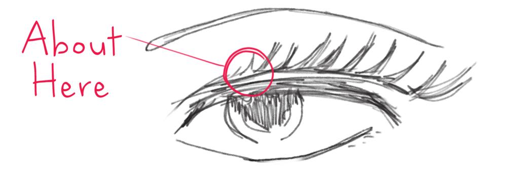eyelash_sketch.jpg