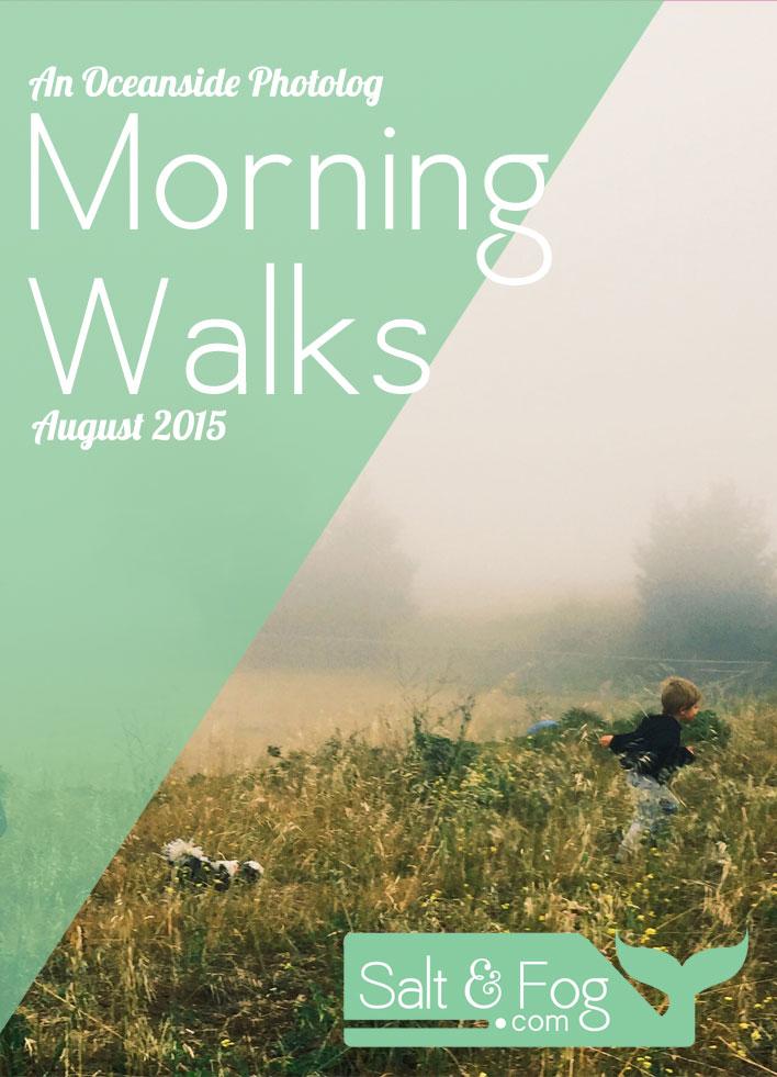 Auguts_walks_header.jpg