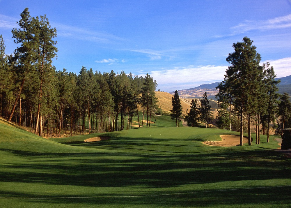The Bear - Okanagan GC