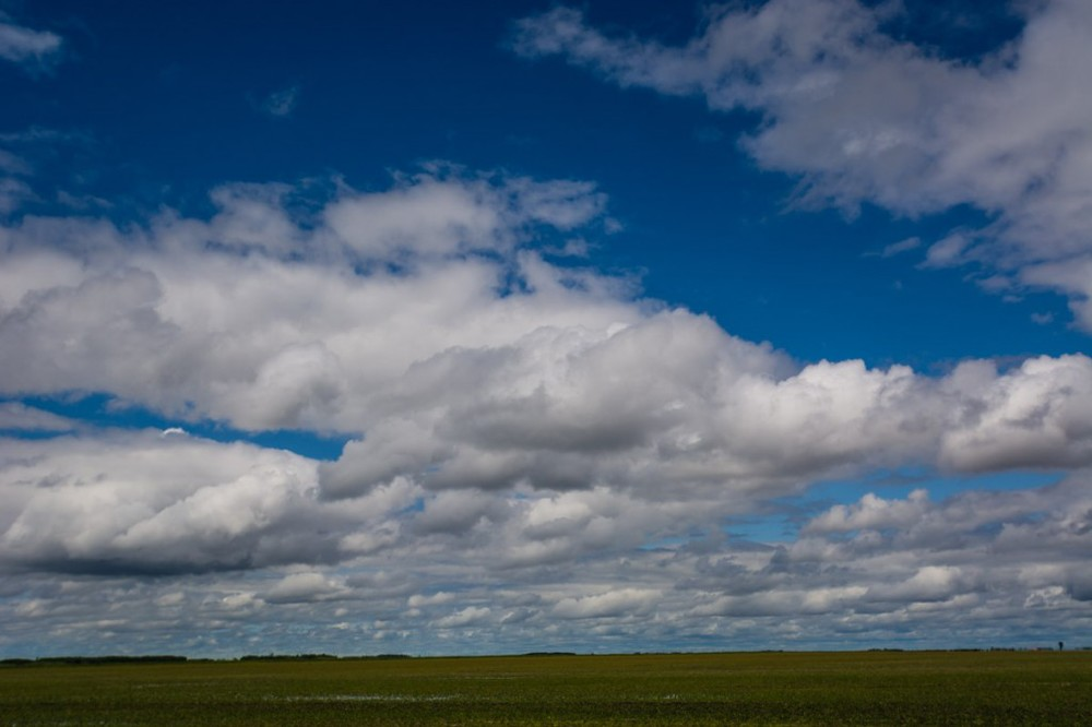 This is the only photo I took in Manitoba. This is the only photo TO take in Manitoba. If you can picture this (+/- the blue sky and white fluffy clouds) for 6 hours or so, then there is no need for you to ever drive across Manitoba. You're welcome.