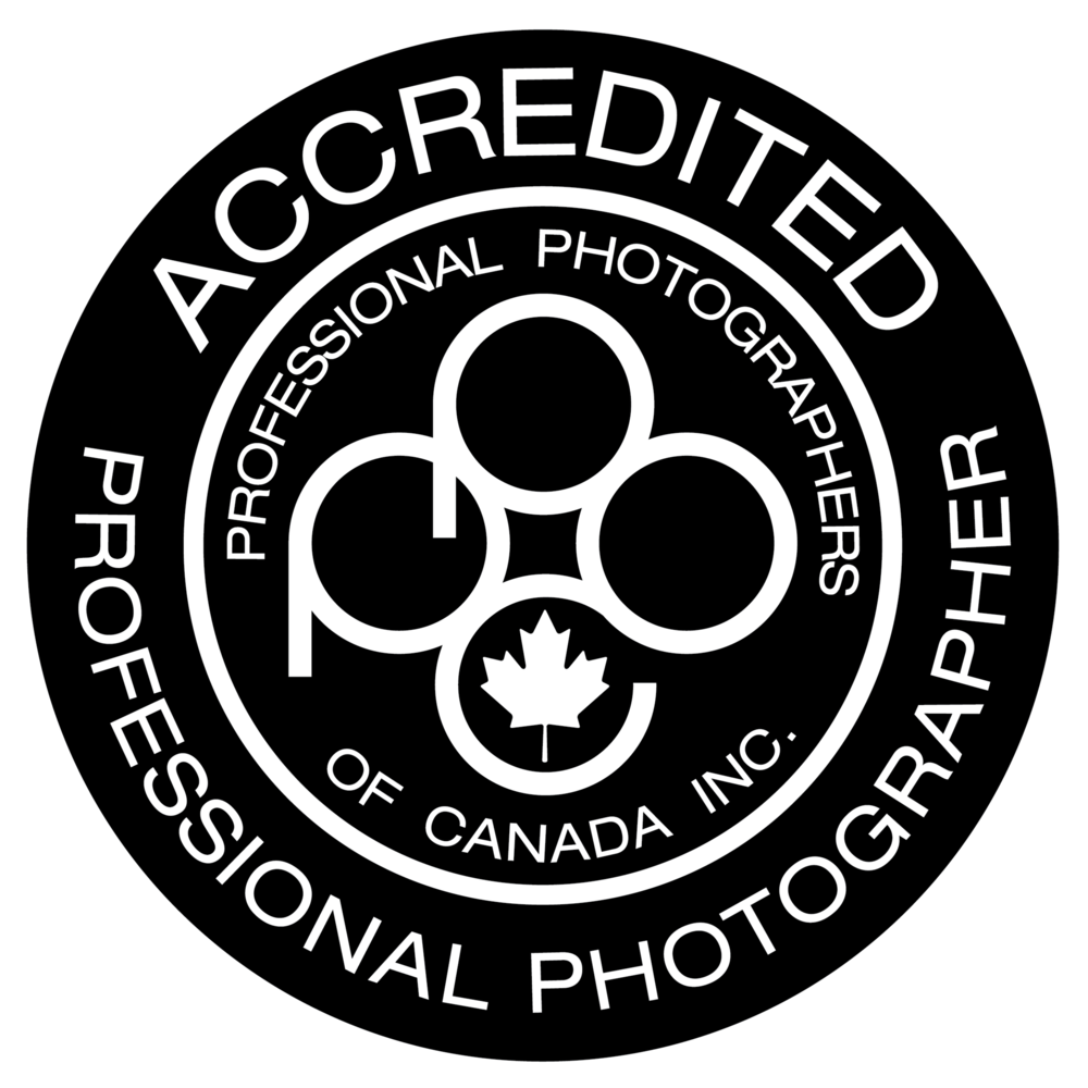 Nationally Accredited in Pictorial/Scenic Photography • Canine Portraiture • Ornithology/Bird Photography • Animal Portraits • Feline Portraiture • Wildlife Photography