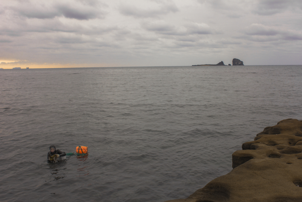 Lone Diver in a big sea.jpg