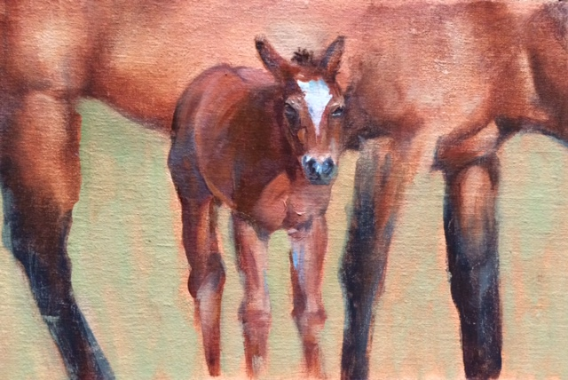 Foal and Mother 8x10