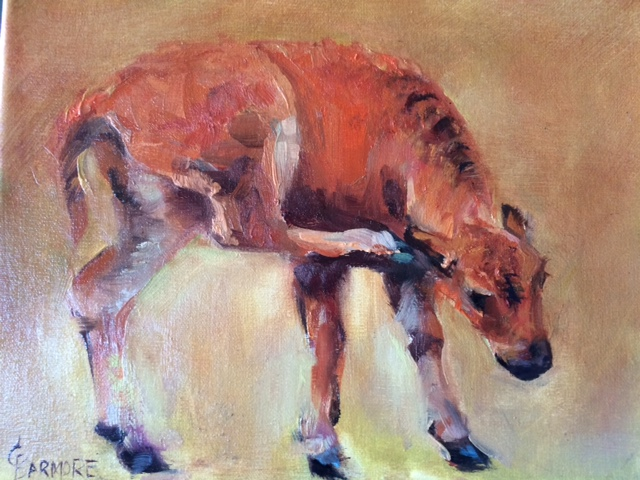 Bison Scratch 8x10 Oil on Linen