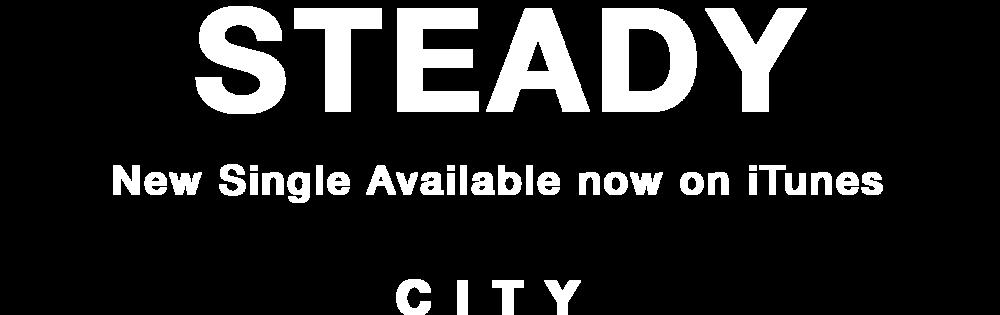 Steady_WebType.png