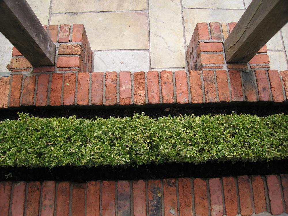 box formal planting with reclaimed brickwork in garden belfast