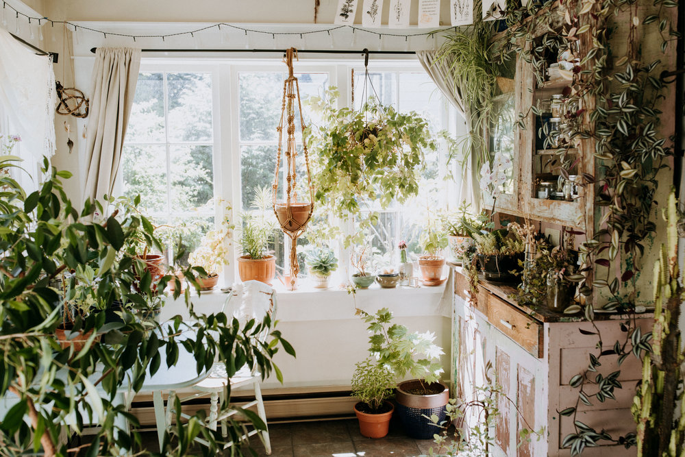 Indoor Garden - La Loba Jewels-107.jpg