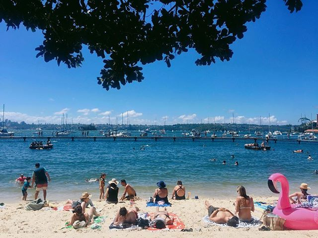 Another beach day! This place is best for deep water dives 🏊 #swimming #sydney #summer #beach