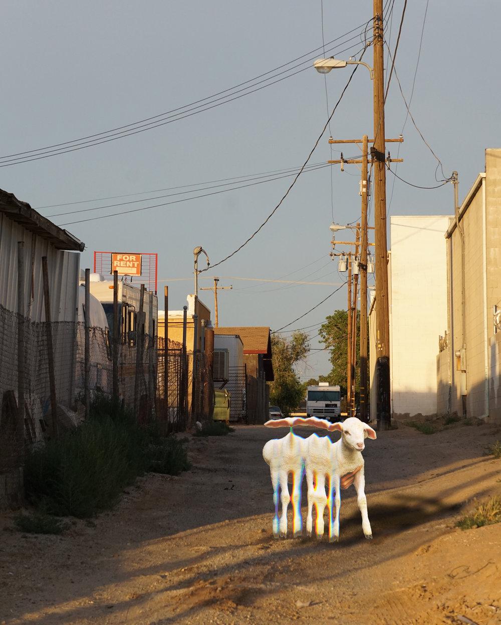 Desert Alley